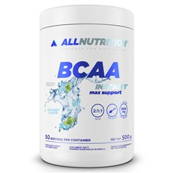 BCAA MAX SUPPORT INSTANT - 500g