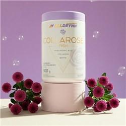 COLLAROSE FISH