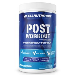 Post Workout Pro Series - 600g